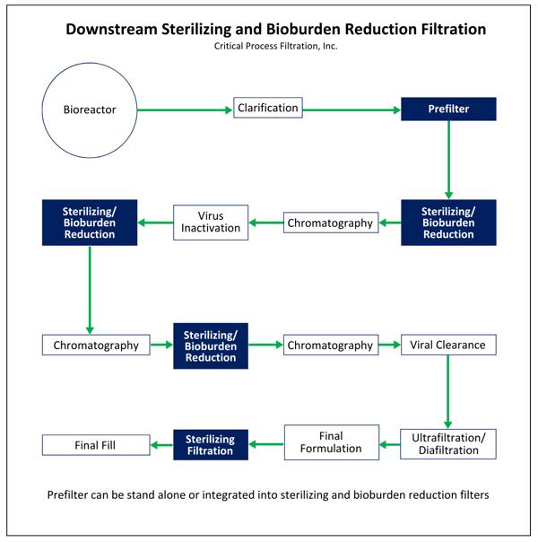 Downstream Sterilizing and Bioburden Reduction Filtration